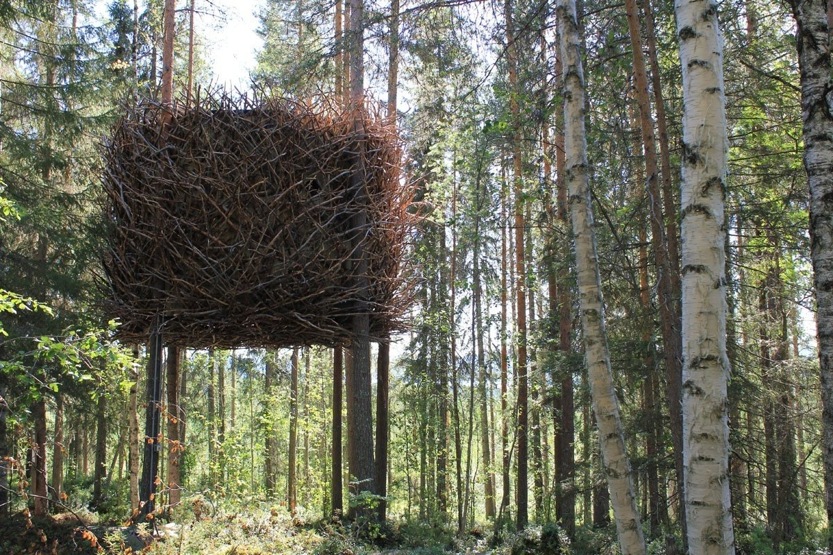 7crre_The-Birds-Nest-Treehotel