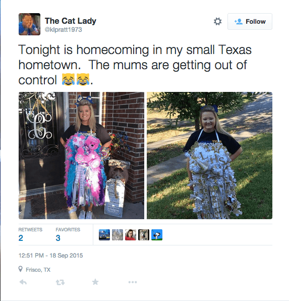 Twitter/The Cat Lady