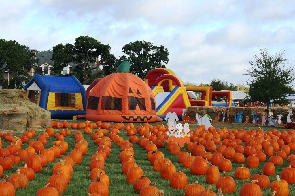 Our Visit to the Big Orange Pumpkin Farm - Mainly