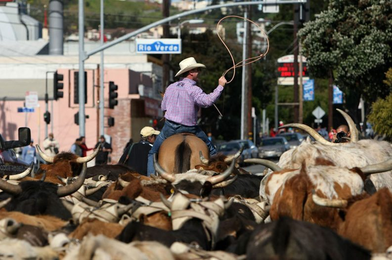 15 Places in the US Where Cowboy Culture Is Alive and Well
